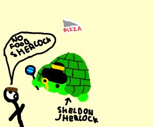 Sherlock Turtle