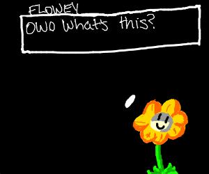 howdy, im flowey...FlOwEy ThE fLoWeR..