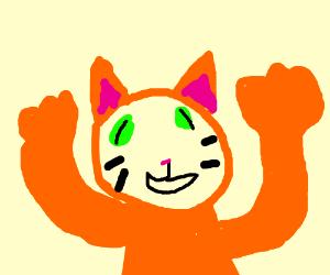 crazy ginger cat