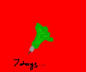 broccolibola