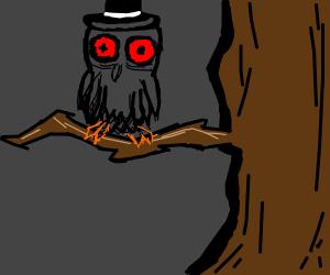 Cross faded owl