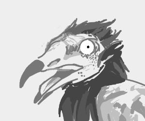 DBS-worthy vulturr