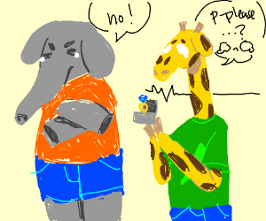 Elephant rejects when giraffe asks to marry