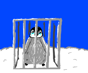 Penguin is trapped in a cage