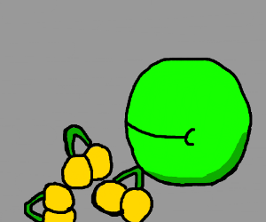 green pacman eating yellow cherrys