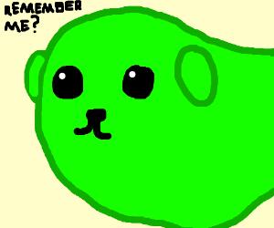 Remember Mameshiba?