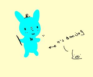 cute bunnies dancing