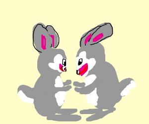 bunnies in love