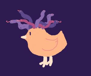 Medusa Birb