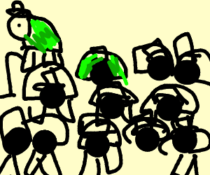 Tons of turtles with top hats