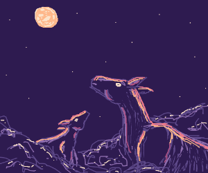 Two deer with midnight sky behind them