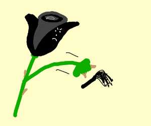 A black rose about to hit the whip