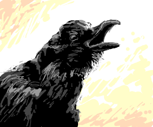 crow screaming