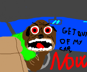 "angry dog driving w moose ""GET OUT OF MY CAR"""
