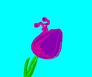 blues clues pink friend on purple flower