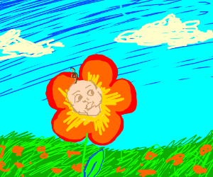 Flower but the yellow part is a baby's face