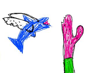 flying shark eats watermelon-cactus
