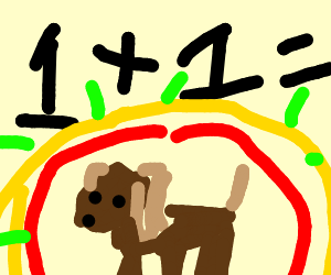 dog is answer to math problem