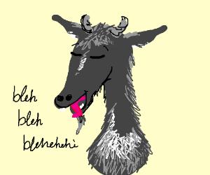 A talkative goat