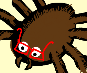 Tarantula with 4 eyes