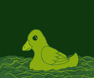 duck swimming on green water w/green sky