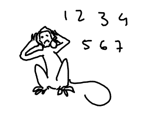 Sitting white monkey in counting