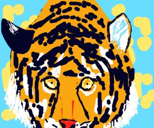Tiger drinking from pond