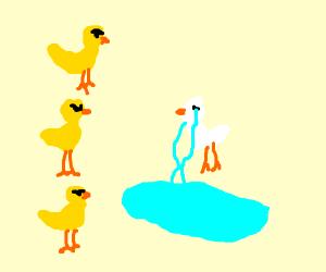 three yellow birds and one white bird