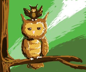 a owl whit a smaller owl on its head
