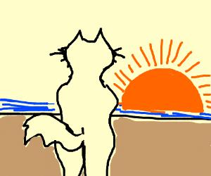 Fursona watching sunset