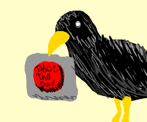 Crow holding button that says TMOC THE DAY
