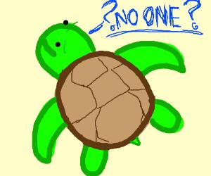 a turte questioning no one