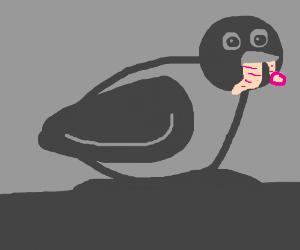 a bird with a condom in its beak