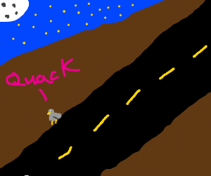 ducks doin duck things on dark road