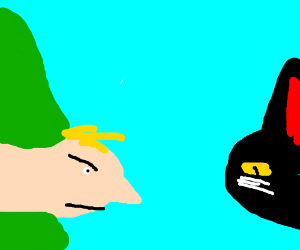 Link facing a black cat