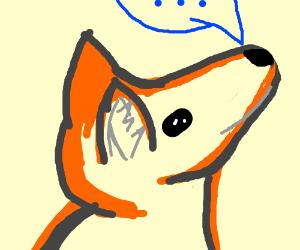 """""""Hatee-hatee-hatee-ho!"""" What the fox say?"""