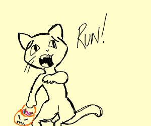 Halloween cat saying run