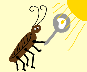 Cockroach cooks deformed fried egg in the sun