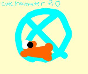 cute hamster PIO