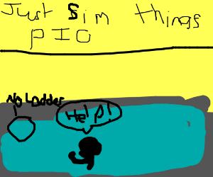 Just sim things (P.I.O)
