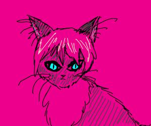 Pink Haired Neko
