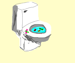 bugs in a toilet