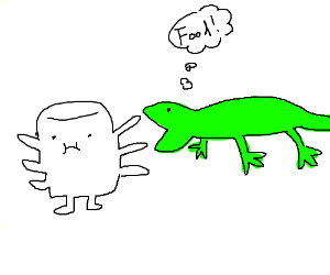 Lizard thinks multi-armed marshmallow is food.