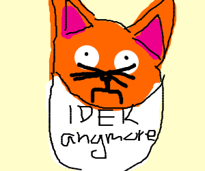 "Cats bib says ""IDEK anymore"""