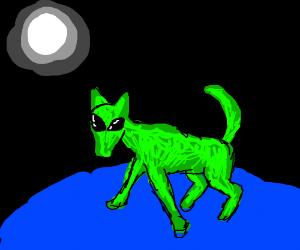 Green dog alien eyes in the night
