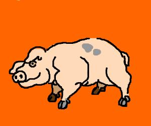 buff pig drawing by cdbeetle drawception