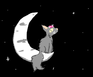 Cat sitting on moon with a crystal forehead