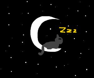 Crescent moon cat