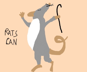 Rats can't dance