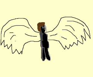 if humans had wings